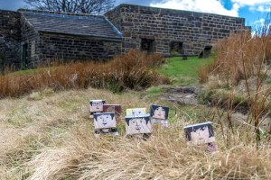 Mini marchers at Top Withens (the inspiration for Wuthering Heights)