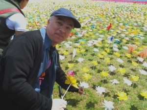 Mark Dawson plants a white rose in the field of flowers.